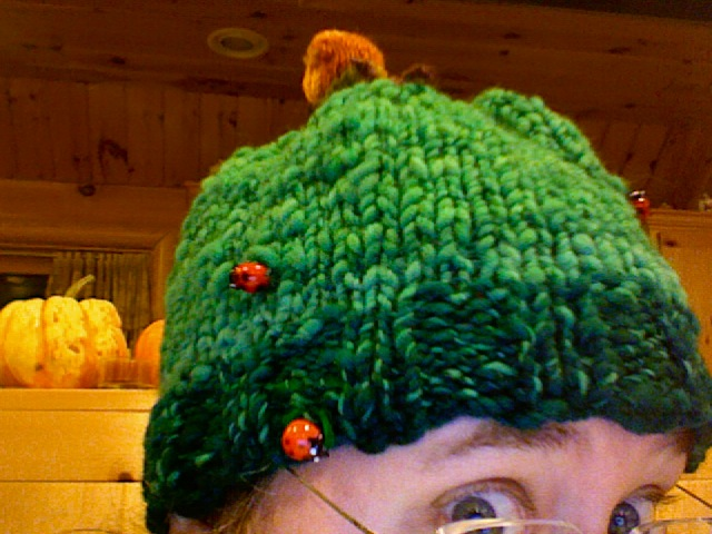 Douglas Spalding Hat.  Glass lady bugs.  Knitted Snail Finial.